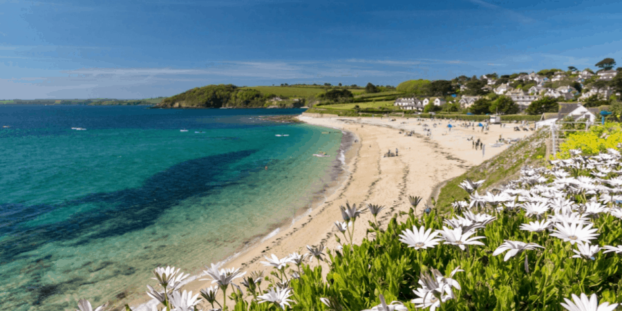 10 Fun Things To Do In Falmouth