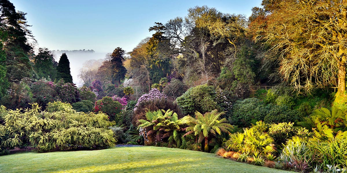 reasons-to-visit-falmouth-the-working-boat-pub-cornwall-gardens-in-falmouth-trebah-garden